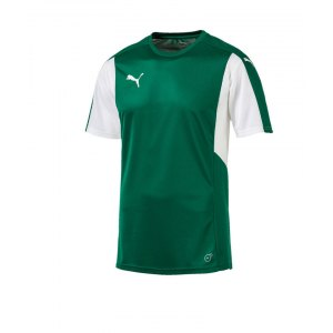 puma-dominate-trikot-kurzarm-gruen-weiss-f05-shortsleeve-shirt-jersey-matchwear-spiel-training-teamsport-703063.png