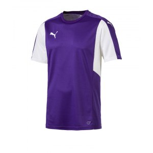 puma-dominate-trikot-kurzarm-lila-weiss-f10-shortsleeve-shirt-jersey-matchwear-spiel-training-teamsport-703063.png