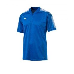 puma-striker-trikot-kurzarm-blau-weiss-f02-herren-fussball-kurzarm-trikot-teamsport-703065.png