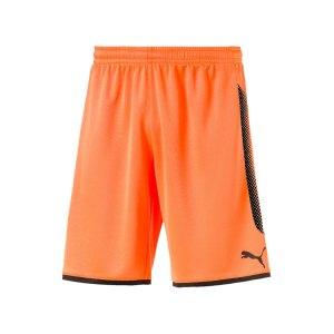 puma-gk-short-torwartshort-orange-schwarz-f44-torwart-goalkeeper-torspieler-short-hose-kurz-herren-men-maenner-703068.png