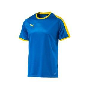 puma-liga-trikot-kurzarm-blau-gelb-f16-funktionskleidung-vereinsausstattung-team-ausruestung-mannschaftssport-ballsportart-703417.png