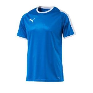 puma-liga-trikot-kurzarm-rot-blau-f02-funktionskleidung-vereinsausstattung-team-ausruestung-mannschaftssport-ballsportart-703417.png