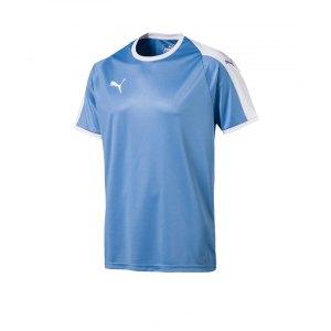 puma-liga-trikot-kurzarm-blau-weiss-f18-funktionskleidung-vereinsausstattung-team-ausruestung-mannschaftssport-ballsportart-703417.png