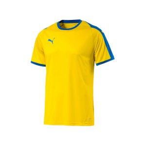 puma-liga-trikot-kurzarm-gelb-blau-f17-funktionskleidung-vereinsausstattung-team-ausruestung-mannschaftssport-ballsportart-703417.png