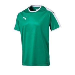 puma-liga-trikot-kurzarm-gruen-weiss-f05-funktionskleidung-vereinsausstattung-team-ausruestung-mannschaftssport-ballsportart-703417.png