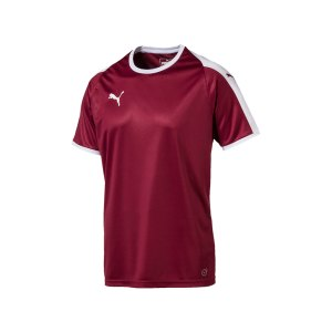 puma-liga-trikot-kurzarm-rot-weiss-f09-funktionskleidung-vereinsausstattung-team-ausruestung-mannschaftssport-ballsportart-703417.jpg