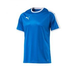 puma-liga-trikot-kurzarm-kids-blau-weiss-f02-kinder-sport-trikot-team-mannschaftssport-ballsportart-703418.png