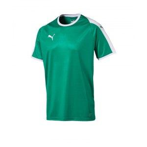 puma-liga-trikot-kurzarm-kids-gruen-weiss-f05-kinder-sport-trikot-team-mannschaftssport-ballsportart-703418.png