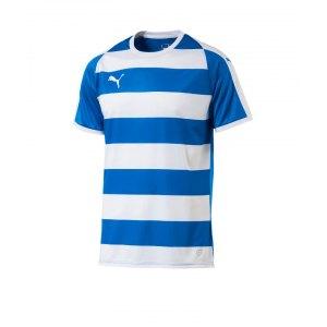 puma-liga-hooped-trikot-kurzarm-blau-weiss-f02-teamsport-textilien-sport-mannschaft-erwachsene-703422.jpg