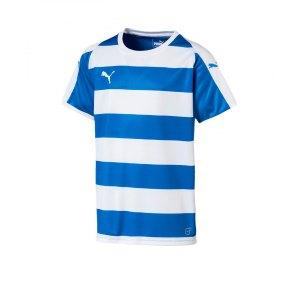 puma-liga-hooped-trikot-kurzarm-kids-blau-f02-teamsport-textilien-sport-mannschaft-kinder-jugendliche-703423.png