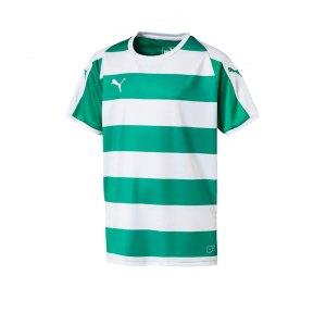 puma-liga-hooped-trikot-kurzarm-kids-gruen-f15-teamsport-textilien-sport-mannschaft-kinder-jugendliche-703423.png