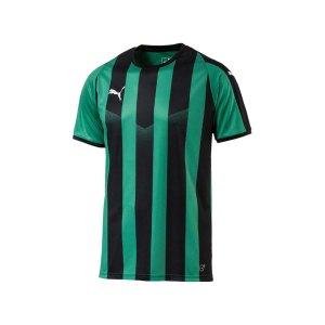 puma-liga-striped-trikot-kurzarm-gruen-schwarz-f24-teamsport-textilien-sport-mannschaft-erwachsene-703424.jpg