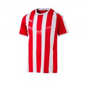 puma-liga-striped-trikot-kurzarm-rot-weiss-f01-teamsport-textilien-sport-mannschaft-erwachsene-703424.jpg