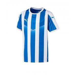 puma-liga-striped-trikot-kurzarm-kids-blau-f02-teamsport-textilien-sport-mannschaft-kinder-jugendliche-703425.jpg