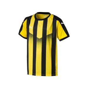 puma-liga-striped-trikot-kurzarm-kids-gelb-f07-teamsport-textilien-sport-mannschaft-kinder-jugendliche-703425.png