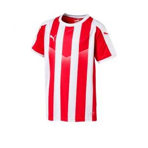 puma-liga-striped-trikot-kurzarm-kids-rot-f01-teamsport-textilien-sport-mannschaft-kinder-jugendliche-703425.png