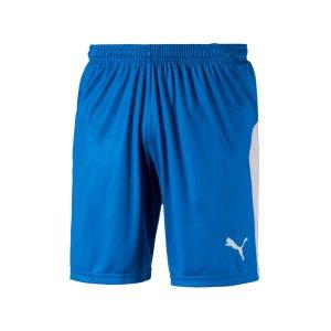 puma-liga-short-blau-weiss-f02-teamsport-textilien-sport-mannschaft-703431.png