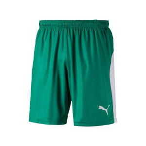 puma-liga-short-gruen-weiss-f05-teamsport-textilien-sport-mannschaft-703431.png