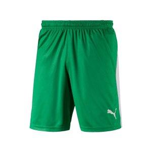 puma-liga-short-gruen-weiss-f35-teamsport-textilien-sport-mannschaft-703431.png