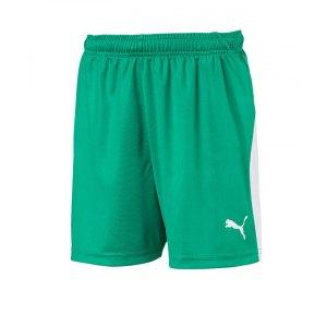 puma-liga-short-kids-weiss-gruen-weiss-f05-teamsport-textilien-sport-mannschaft-703433.png