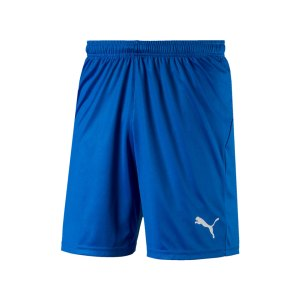 puma-liga-core-short-f02-hose-kurz-teamsport-match-training-mannschaft-703436.jpg
