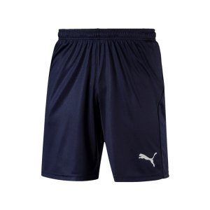 puma-liga-core-short-f06-hose-kurz-teamsport-match-training-mannschaft-703436.jpg