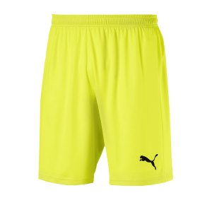 puma-puma-liga-core-short-lila-weiss-f10-fussball-teamsport-textil-shorts-703436.png
