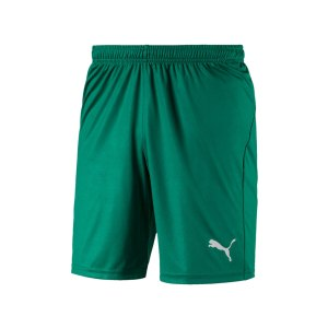 puma-liga-core-short-f05-hose-kurz-teamsport-match-training-mannschaft-703436.jpg