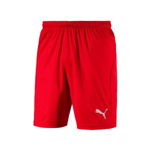 puma-liga-core-short-f01-hose-kurz-teamsport-match-training-mannschaft-703436.jpg