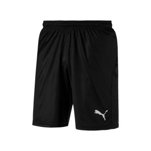 puma-liga-core-short-f03-hose-kurz-teamsport-match-training-mannschaft-703436.jpg