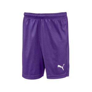 puma-liga-core-short-kids-lila-weiss-f10-teamsport-textilien-sport-mannschaft-703437.jpg