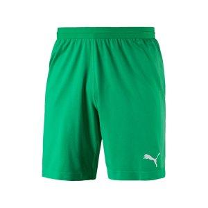 puma-final-evoknit-torwartshort-gruen-schwarz-f05-teamsport-teamwear-short-pant-fussballshort-521015001.jpg