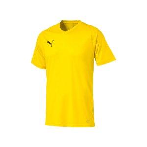 puma-liga-core-trikot-kurzarm-f07-mannschaft-verein-teamsport-ausstattung-703509.png