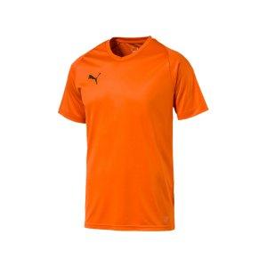 puma-liga-core-trikot-kurzarm-f08-mannschaft-verein-teamsport-ausstattung-703509.png