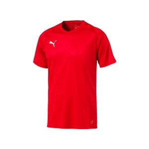 puma-liga-core-trikot-kurzarm-f01-mannschaft-verein-teamsport-ausstattung-703509.png