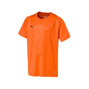 puma-liga-core-trikot-kurzarm-kids-orange-f08-teamsport-mannschaft-spiel-703542.png
