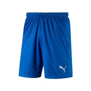 puma-liga-core-short-mit-innenslip-blau-f02-fussball-spieler-teamsport-mannschaft-verein-703615.png