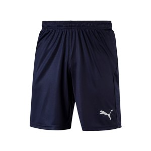 puma-liga-core-short-mit-innenslip-dunkelblau-f06-fussball-spieler-teamsport-mannschaft-verein-703615.jpg
