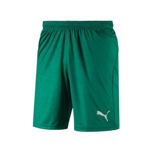 puma-liga-core-short-mit-innenslip-gruen-f05-fussball-spieler-teamsport-mannschaft-verein-703615.png