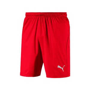 puma-liga-core-short-mit-innenslip-rot-f01-fussball-spieler-teamsport-mannschaft-verein-703615.png