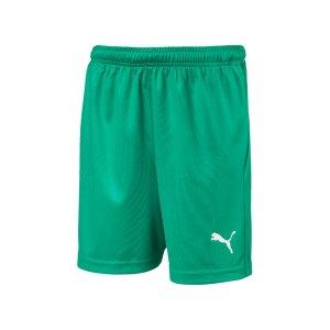 puma-liga-core-short-mit-innenslip-kids-gruen-f05-fussball-spieler-teamsport-mannschaft-verein-703616.png