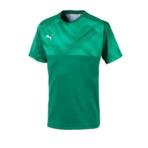 puma-cup-jersey-trikot-kurzarm-kids-gruen-f05-fussball-teamsport-textil-trikots-703774.jpg