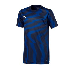 puma-cup-jersey-core-t-shirt-kids-dunkelblau-f06-fussball-teamsport-textil-t-shirts-703776.png