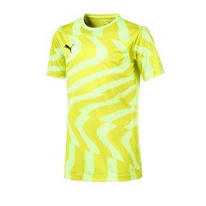 puma-cup-jersey-core-t-shirt-kids-gelb-f46-fussball-teamsport-textil-t-shirts-703776.jpg
