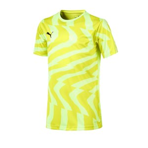 puma-cup-jersey-core-t-shirt-kids-gelb-f46-fussball-teamsport-textil-t-shirts-703776.png