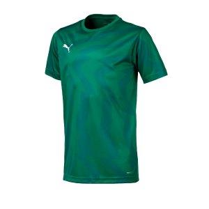 puma-cup-jersey-core-t-shirt-kids-gruen-f05-fussball-teamsport-textil-t-shirts-703776.png