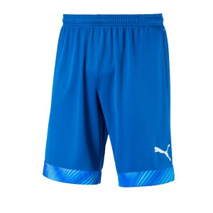 puma-cup-short-blau-weiss-f02-fussball-teamsport-textil-shorts-704034.png