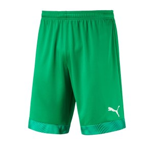 puma-cup-short-gruen-weiss-f43-fussball-teamsport-textil-shorts-704034.png