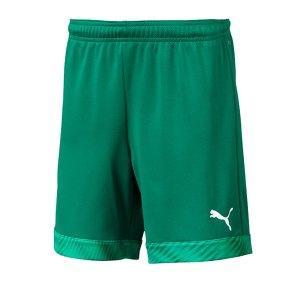 puma-cup-short-kids-dunkelgruen-weiss-f05-fussball-teamsport-textil-shorts-704035.jpg