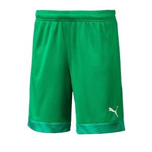 puma-cup-short-kids-gruen-weiss-f43-fussball-teamsport-textil-shorts-704035.png